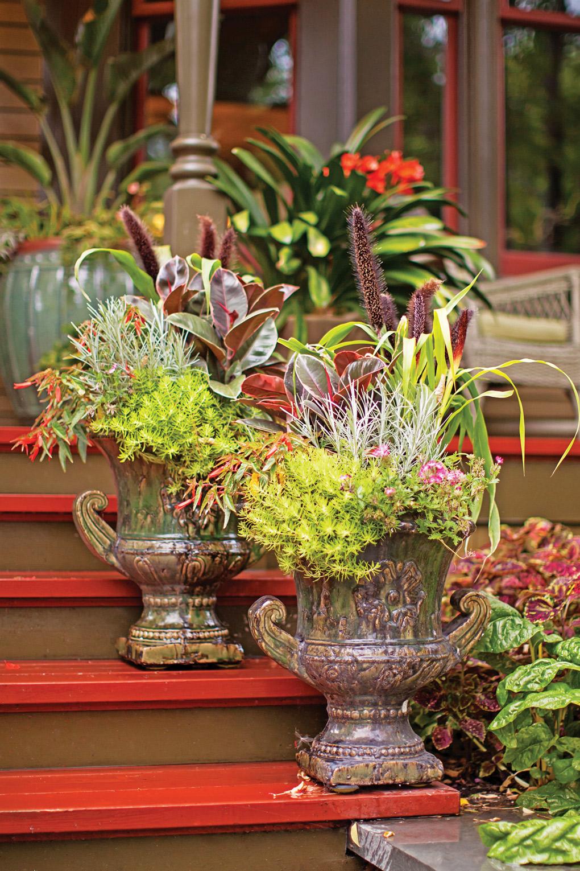Scott-Endres_Front-Step-Plants