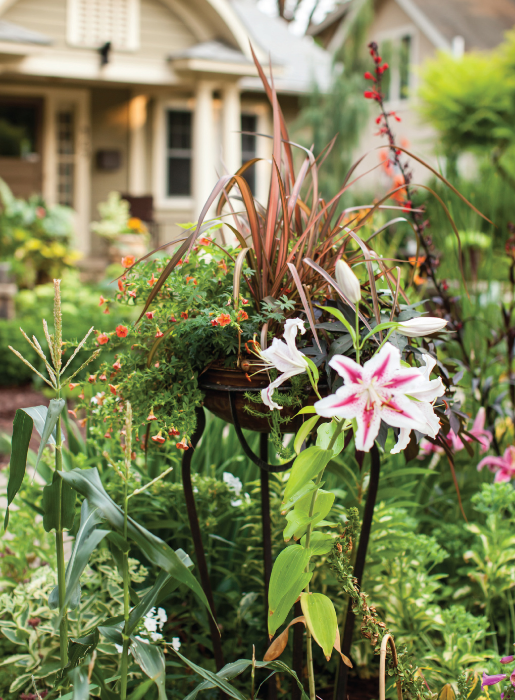 Front-Garden-Lily