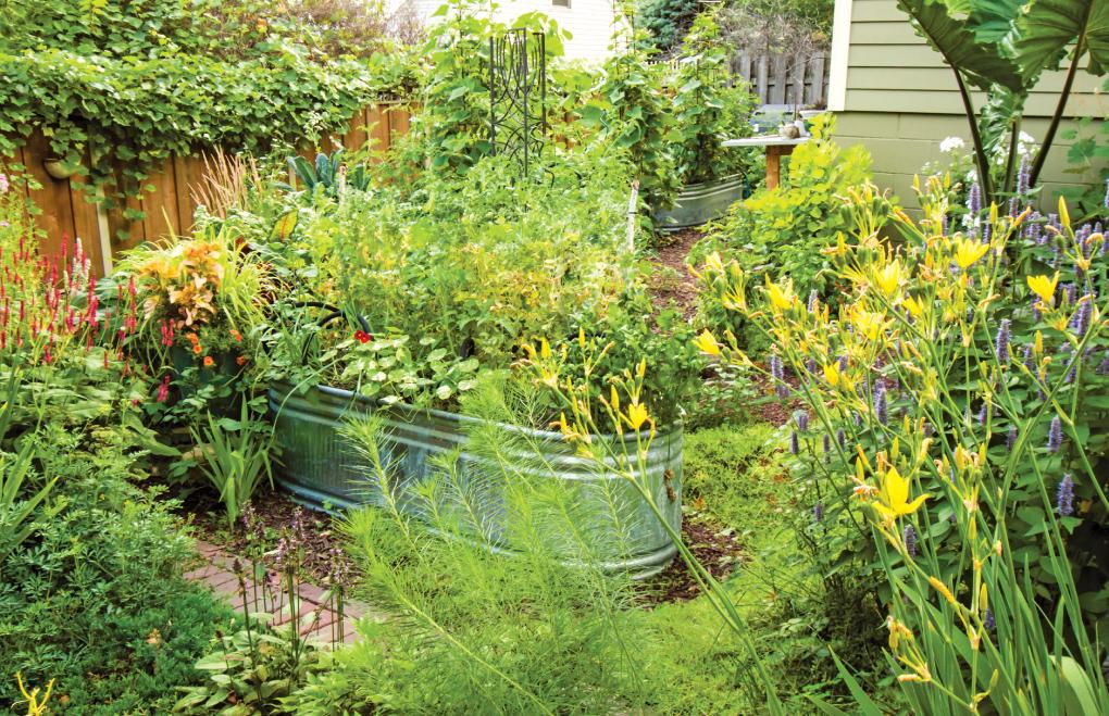 container-garden-edibles