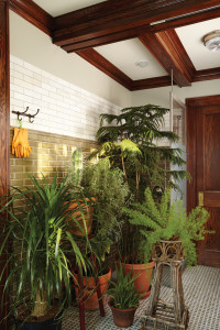 img_2015-09_Over-Winter_Plants_Plant-Room_Tight_Interior_G