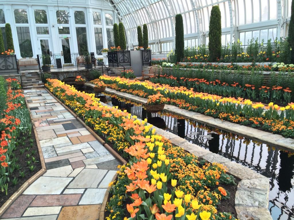 2016 Como Park Spring Flower Show