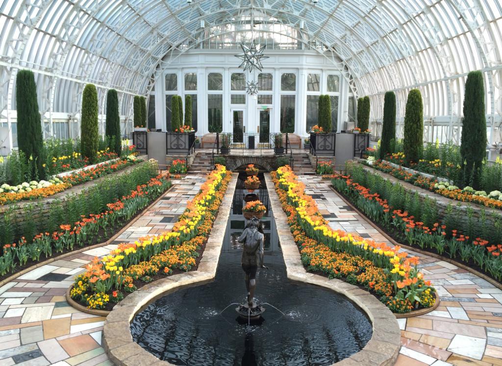 Como Spring Flower Show inside the conservatory