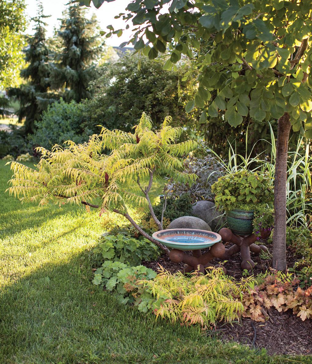 Birdbath in Engelmann's Garden