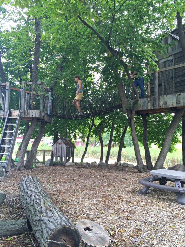 Behind the Scenes of Treehouse and man who built it