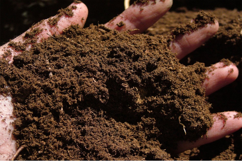 Peat-Soil