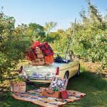Fall-Picnic-Car