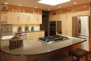 Fusion_Kitchen_X