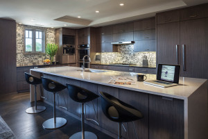 img_08-15_MH_Dark-Wood-Kitchen