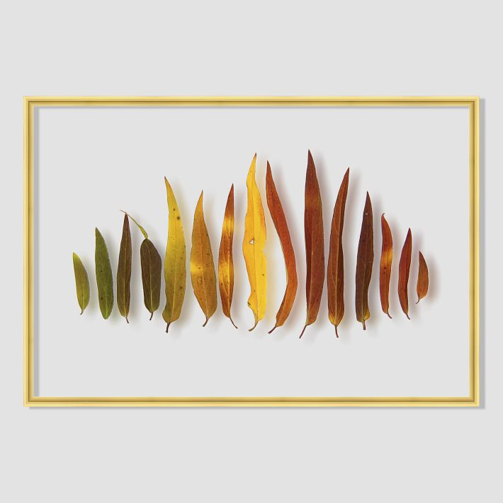 still-acrylic-wall-art-autumn-botanicals-1-o