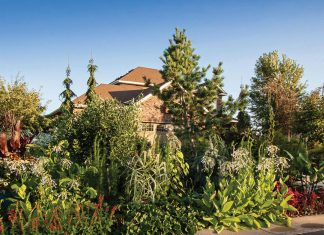 Annuals, Trees, and other plants surround Engelmann's home