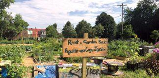 Garden in a Box Community Garden