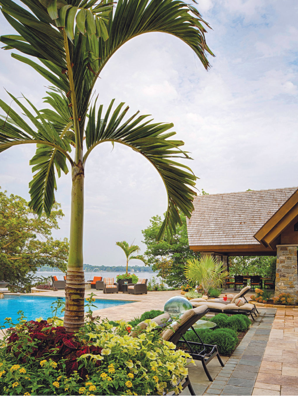 Poolside palm tree
