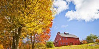 Barn on Farm in Fall