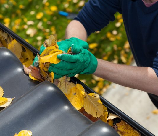 Cleaning Fall Gutters