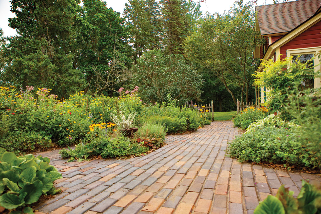 Repurposed bricks create a path through a charming entry garden flanked by herbs, perennials and small shrubs such as the Tiger Eyes sumac with chartreuse foliage near the house.