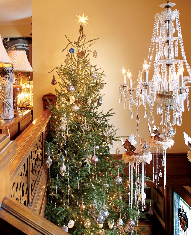 Tall christmas tree inside of entry hall