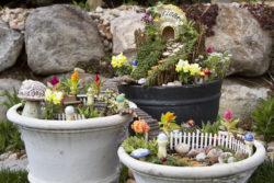 Set of 3 fairy gardens