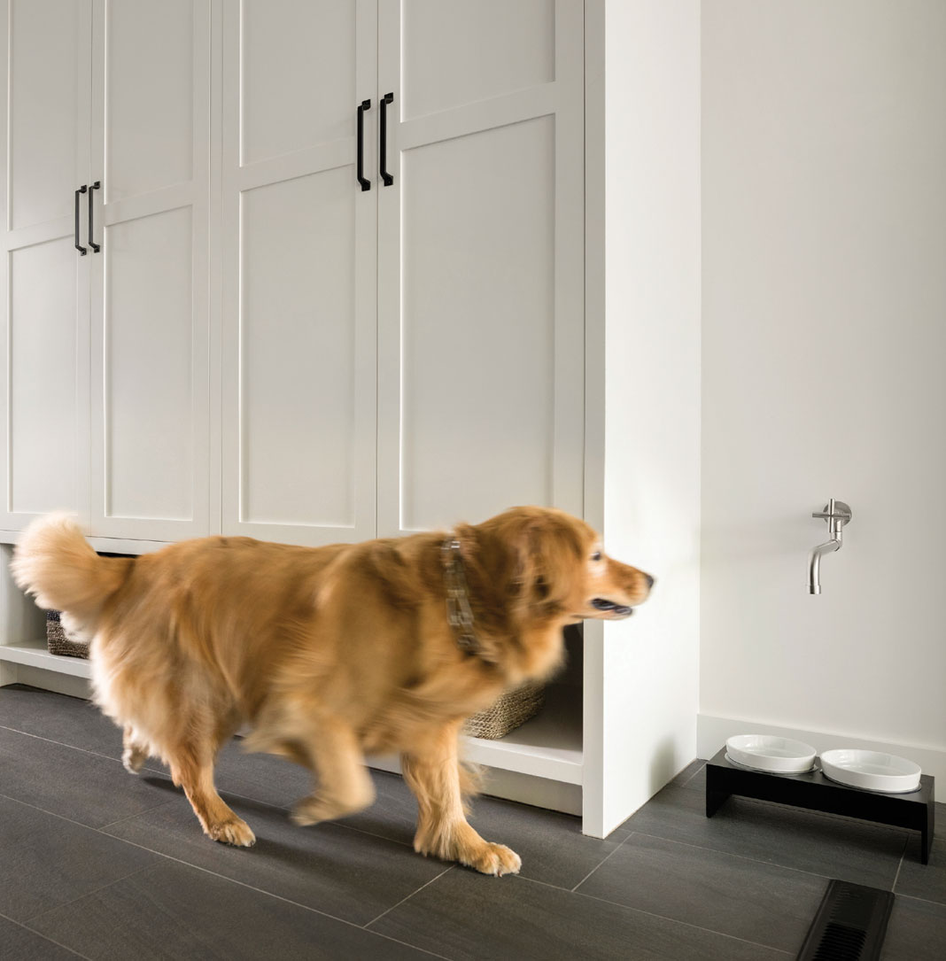 A dog next to a built-in faucet allows for quick and easy refills.