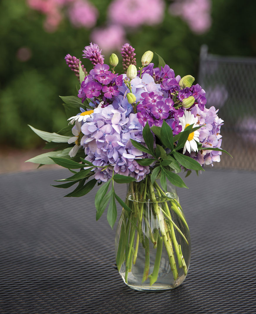 Several of Bailey's favorite picks from his Endless Summer hydrangeas make up delicate floral arrangements perfect for indoor and outdoor entertaining alike.