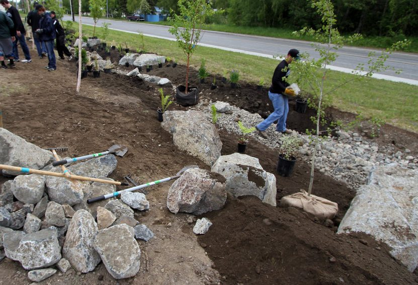 Installation of a rain garden