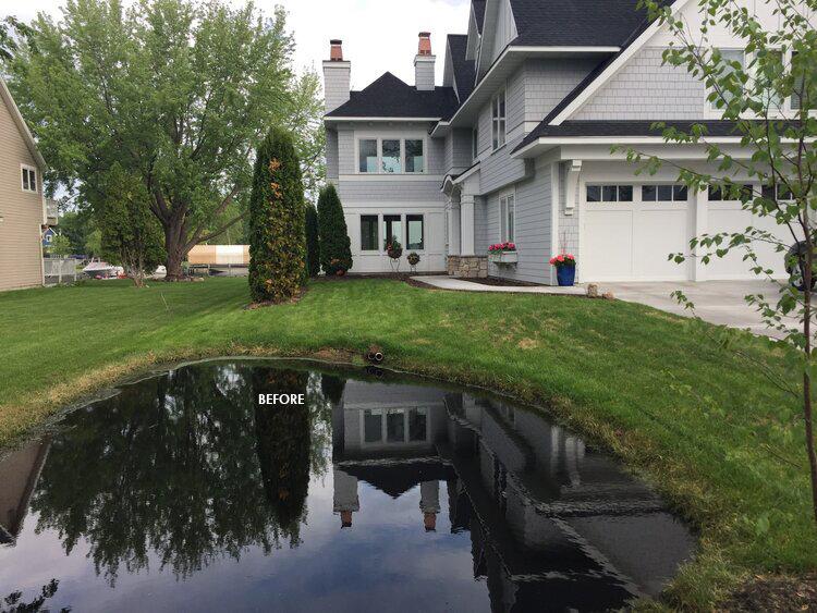 Rain Garden 101 Midwest Home