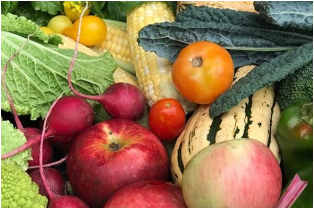 Produce from Tangletown Gardens' farms
