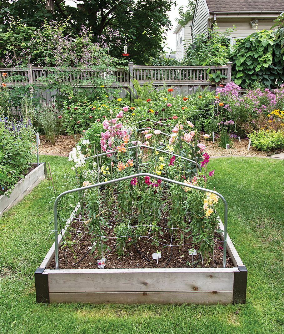 Raised flower beds for A Pretty Posy's owner Susan Hopp. Photo by Tracy Walsh.