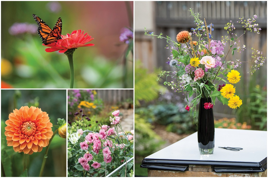 A collage of some of the many flowers in the garden of Susan Hopp, owner of A Pretty Posy. Photos by Tracy Walsh.